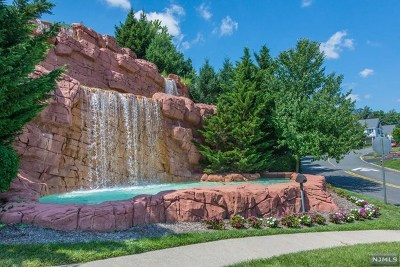 Woodland Park Condo/Townhouse For Sale: 2 Cliff Road #C2