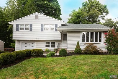 Paramus Single Family Home For Sale: 89 Hemlock Drive