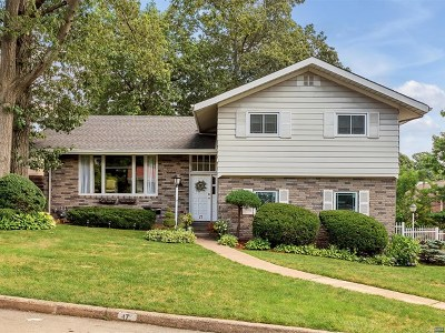 Englewood Cliffs Single Family Home For Sale: 17 Ridge Road