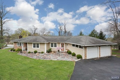 Woodland Park Single Family Home For Sale: 920 Rifle Camp Road