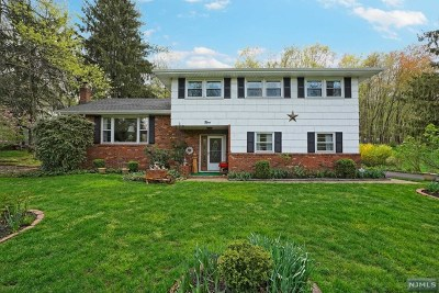 Morris County Single Family Home For Sale: 9 Morningside Drive