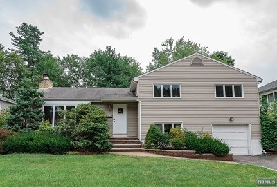 Fair Lawn Single Family Home For Sale: 18 Garwood Road