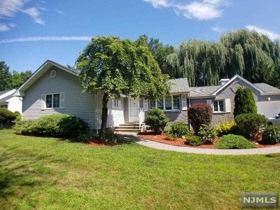 Paramus Single Family Home For Sale: 255 Vivien Court