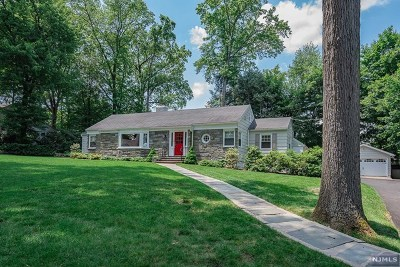 Wyckoff Single Family Home For Sale: 697 Terrace Heights