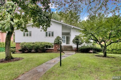 Englewood Cliffs Single Family Home For Sale: 268 Castle Drive