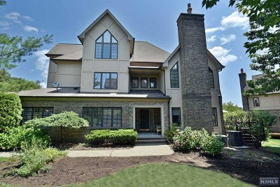 Park Ridge Condo/Townhouse For Sale: 285 Hampshire Ridge