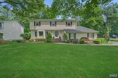 Ramsey Single Family Home For Sale: 344 Elbert Street
