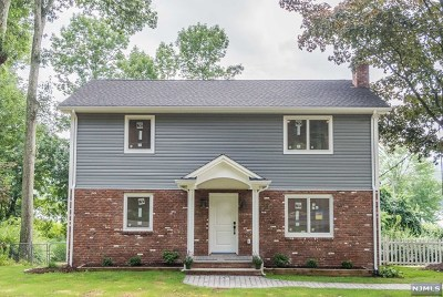 Denville Township Single Family Home For Sale: 284 Franklin Road