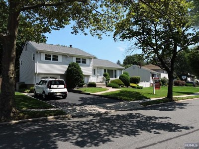 New Milford Single Family Home For Sale: 363 Shea Drive