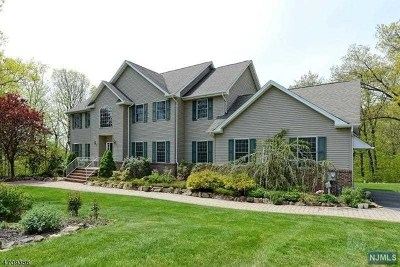 Rockaway Township Single Family Home For Sale: 9 Valhalla Way