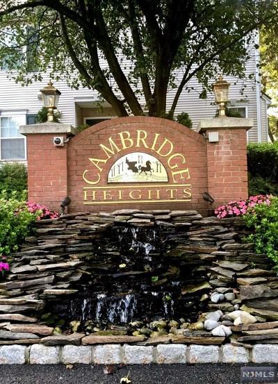 Clifton Condo/Townhouse For Sale: 204 Cambridge Court