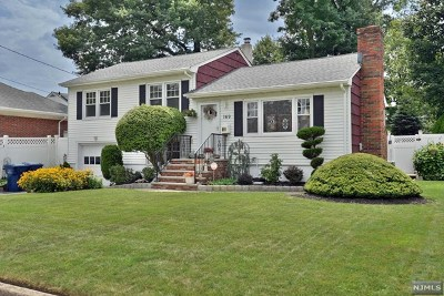 Hackensack Single Family Home For Sale: 167-169 Willow Avenue