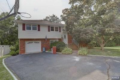 Fair Lawn Single Family Home For Sale: 5-04 3rd Street