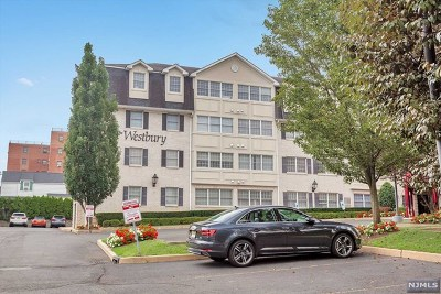 Hackensack Condo/Townhouse For Sale: 131 Clinton Place #316