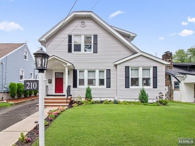 Hackensack Single Family Home For Sale: 210 Elm Avenue