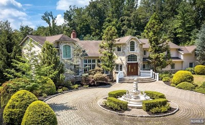 Bergen County Single Family Home For Sale: 14 Deertrail Road