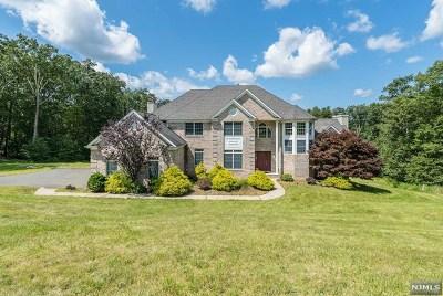 Rockaway Township Single Family Home For Sale: 10 Pasha Court