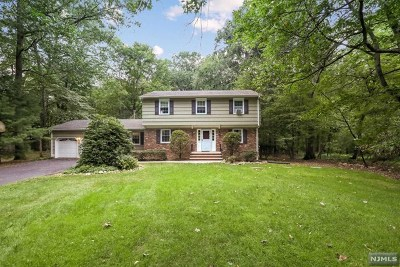 Ringwood Single Family Home For Sale: 165 Buena Vista Drive