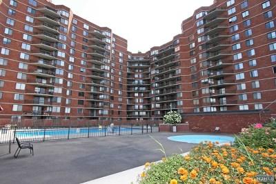 Secaucus NJ Condo/Townhouse For Sale: $310,000