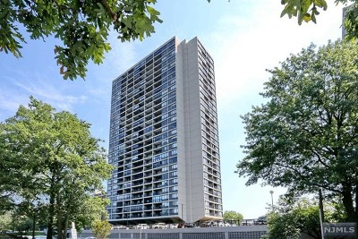 Fort Lee Condo/Townhouse For Sale: 6 Horizon Road #2909