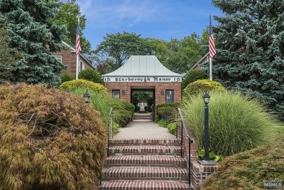 Englewood Condo/Townhouse For Sale: 151 East Palisade Avenue #B6