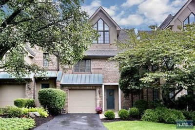 Park Ridge Condo/Townhouse For Sale: 42 Whitney Hill