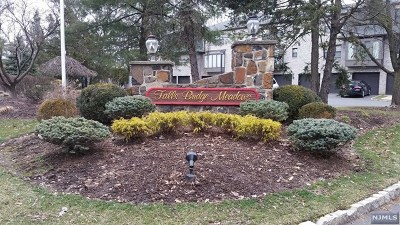 Totowa Condo/Townhouse For Sale: 120 Falls Bridge Drive #120