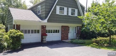 Washington Township Single Family Home For Sale: 390 Naughright Road
