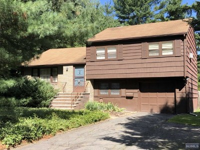 Demarest Single Family Home For Sale: 388 Piermont Road