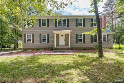 Morris County Single Family Home For Sale: 96 Radtke Road