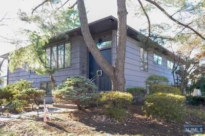 Fair Lawn Single Family Home For Sale: 13-68 Finn Terrace
