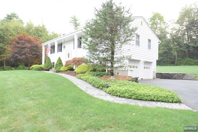 West Milford Single Family Home For Sale: 509 Union Valley Road