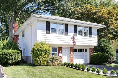 Hillsdale Single Family Home For Sale: 94 Clinton Avenue