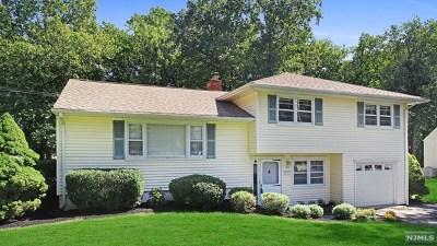 Florham Park Borough Single Family Home For Sale: 150 Crescent Road