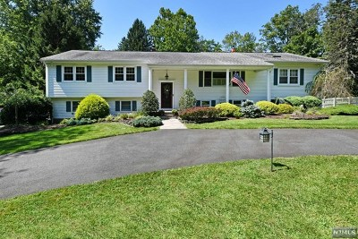 Upper Saddle River Single Family Home For Sale: 547 East Saddle River Road