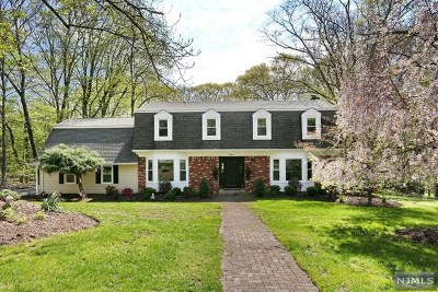 Upper Saddle River Single Family Home For Sale: 18 Valley Lane