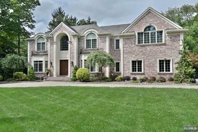 Upper Saddle River Single Family Home For Sale: 529 East Saddle River Road