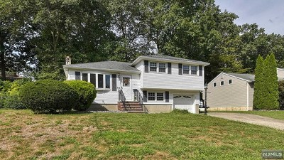 Bloomingdale Single Family Home For Sale: 115 Knolls Road