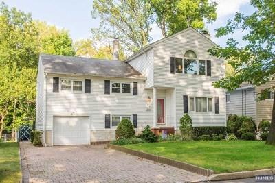 Hackensack Single Family Home For Sale: 156 Coles Avenue