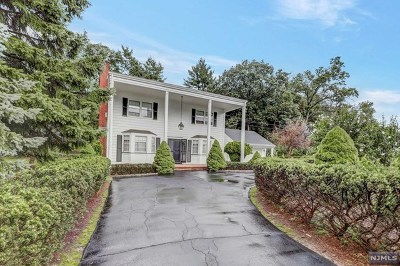 Passaic County Single Family Home For Sale: 409 High Mountain Road