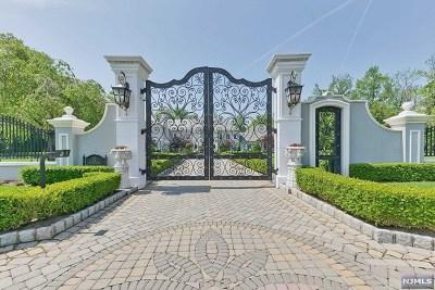 Alpine NJ Single Family Home For Sale: $15,088,000