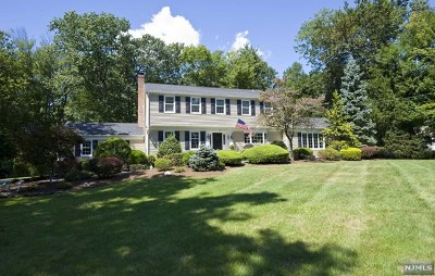 Woodcliff Lake Single Family Home For Sale: 16 Shield Drive