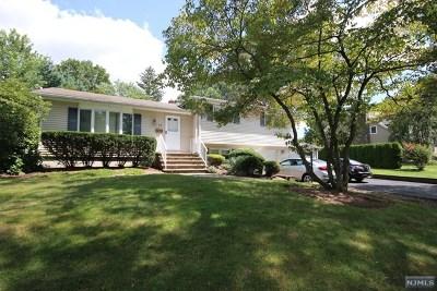 Wayne Single Family Home For Sale: 68 Laauwe Avenue