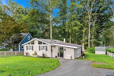 Morris County Single Family Home For Sale: 82 Schwarz Boulevard