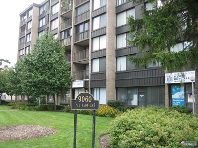 Hudson County Condo/Townhouse For Sale: 9060 Palisade Avenue #820