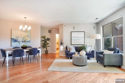 Hudson County Condo/Townhouse For Sale: 24 Ave At Port Imperial #419