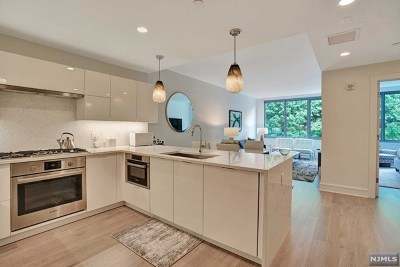 Hudson County Condo/Townhouse For Sale: 9 Ave At Port Imperial #325