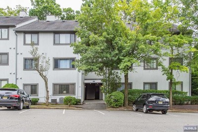 Ramsey Condo/Townhouse For Sale: 117 Cypress Court