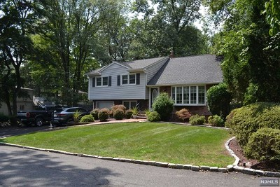 Park Ridge Single Family Home For Sale: 41 Oak Avenue