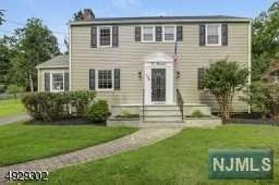 Essex County Single Family Home For Sale: 100 Hillside Avenue